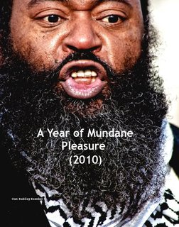 A Year of Mundane Pleasure (2010)