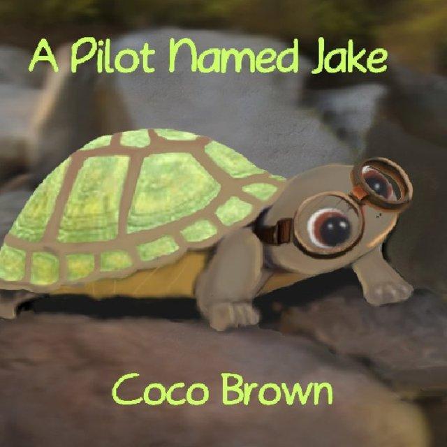 A Pilot Named Jake