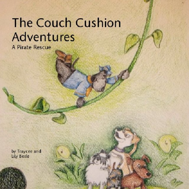 The Couch Cushion Adventures A Pirate Rescue