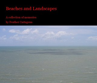 Beaches and Landscapes