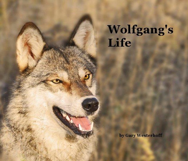 Wolfgang's Life