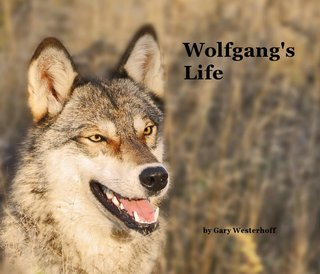 Wolfgang&#x27;s Life