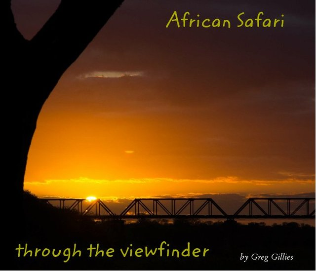 African Safari - Through the viewfinder