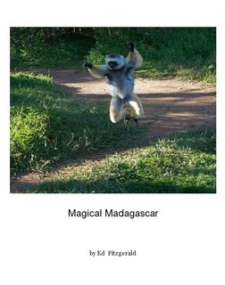 Magical Madagascar
