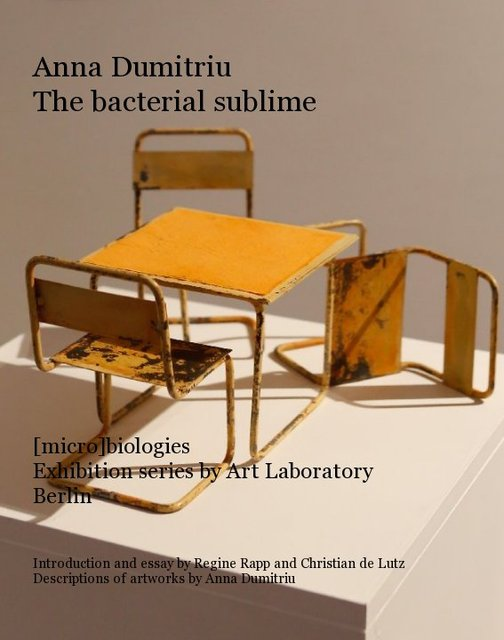 Anna Dumitriu The bacterial sublime