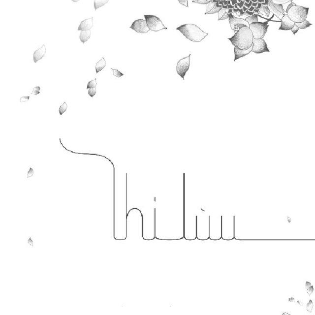 Thi-Lùu, portfolio 2012