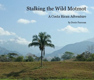 Stalking the Wild Motmot