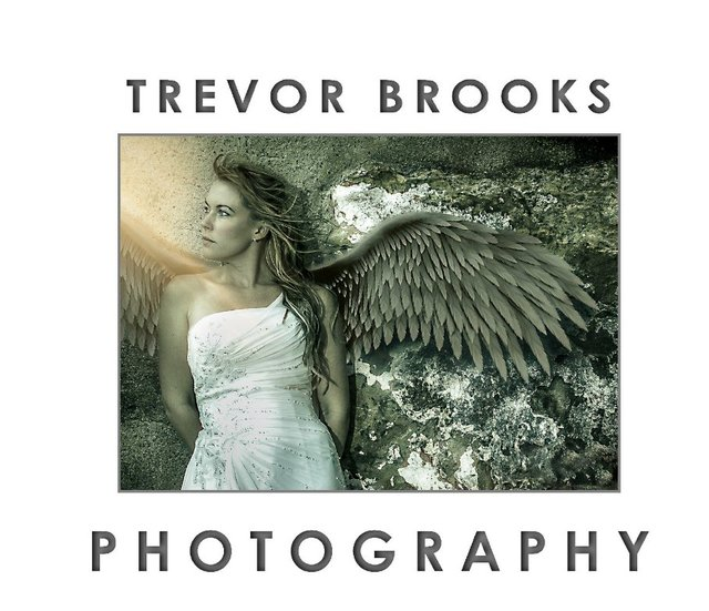 Trevor Brooks Wedding Photography