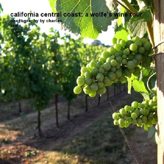california central coast: a wolfe's wine tour