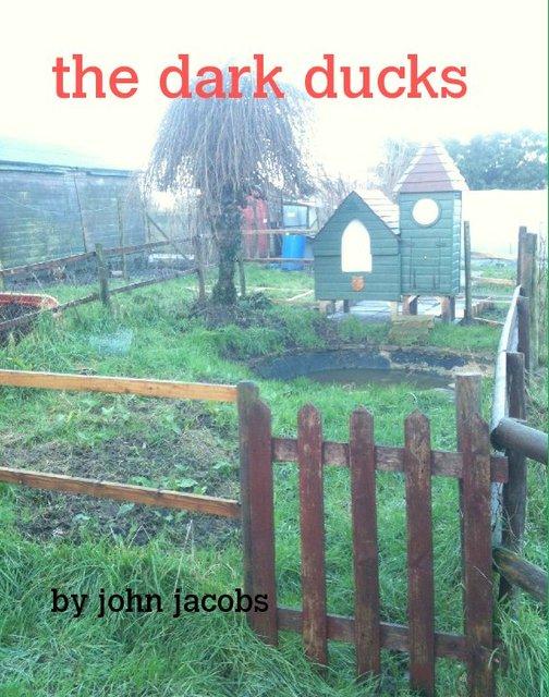 the dark ducks