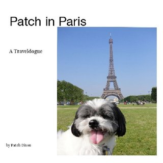Patch in Paris