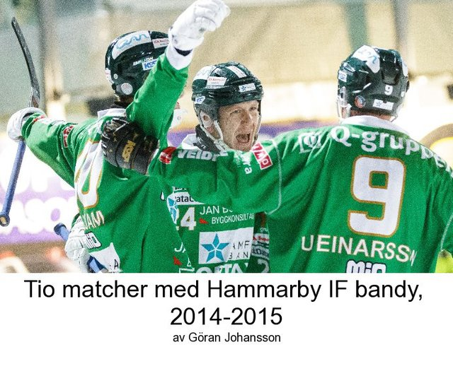 Tio matcher med Hammarby IF bandy 2014 - 2015
