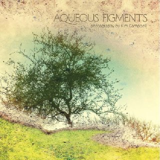Aqueous Figments