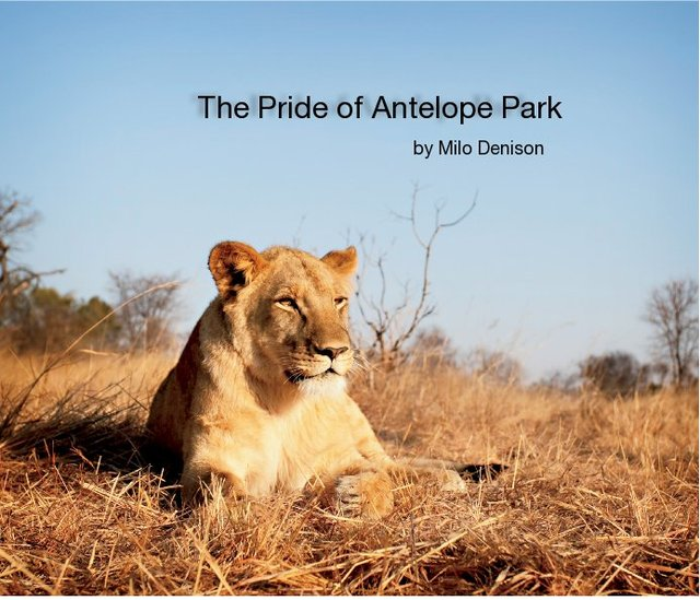 The Pride of Antelope Park
