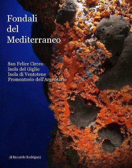 Fondali del Mediterraneo