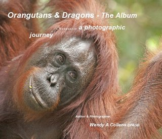 Orangutans &amp; Dragons - The Album