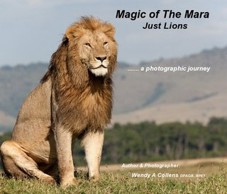 Magic of The Mara Just Lions
