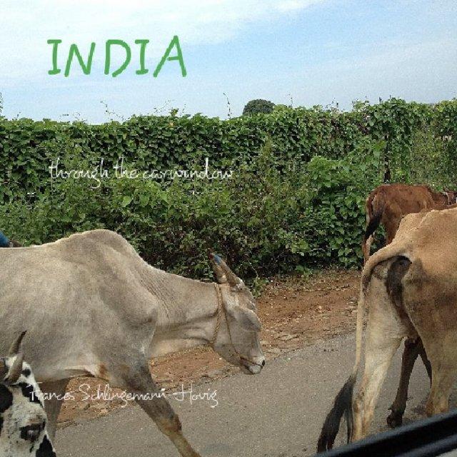 INDIA through the carwindow