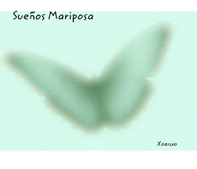 Sueños Mariposa