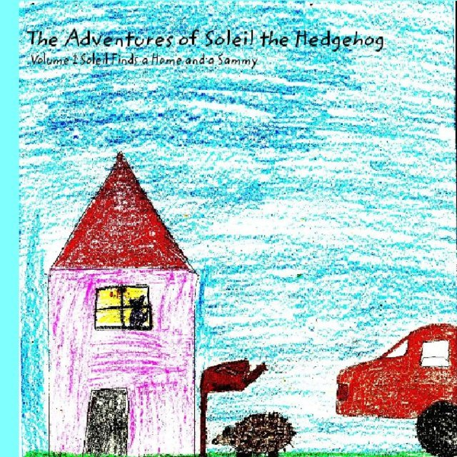 The Adventures of Soleil the Hedgehog
