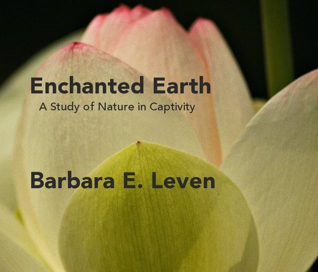 Enchanted Earth