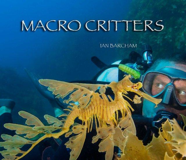 MACRO CRITTERS