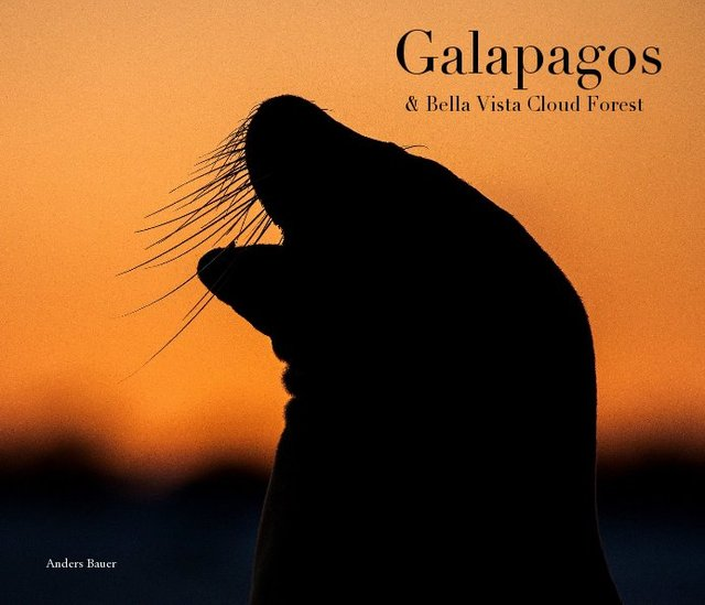 Galapagos & Bella Vista Cloud Forest