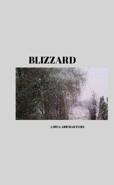 BLIZZARD BOOK 1 LINDA ANN MARTENS