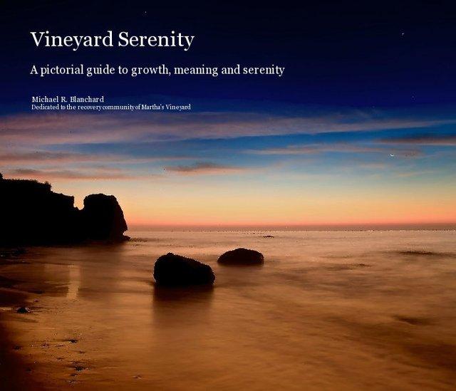 Vineyard Serenity