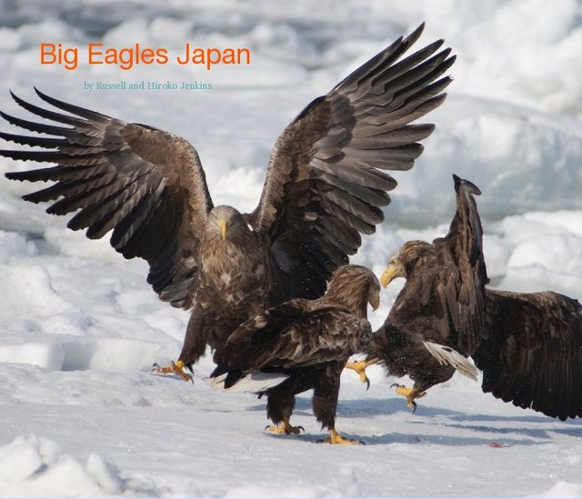 Big Eagles Japan
