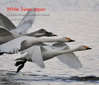 White Swan Japan