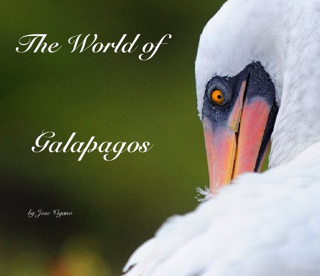 The World of Galapagos
