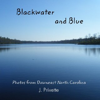 Blackwater and Blue