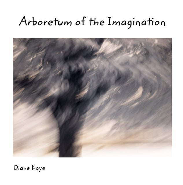 Arboretum of the Imagination