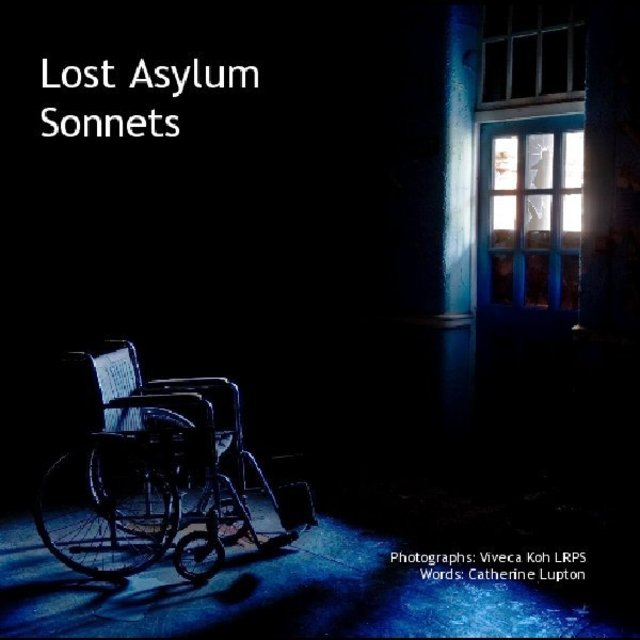 Lost Asylum Sonnets