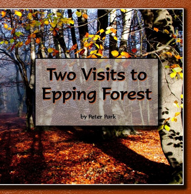 Two Visits to Epping Forest