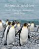 Animals and Ice - Viajes Libro electrónico