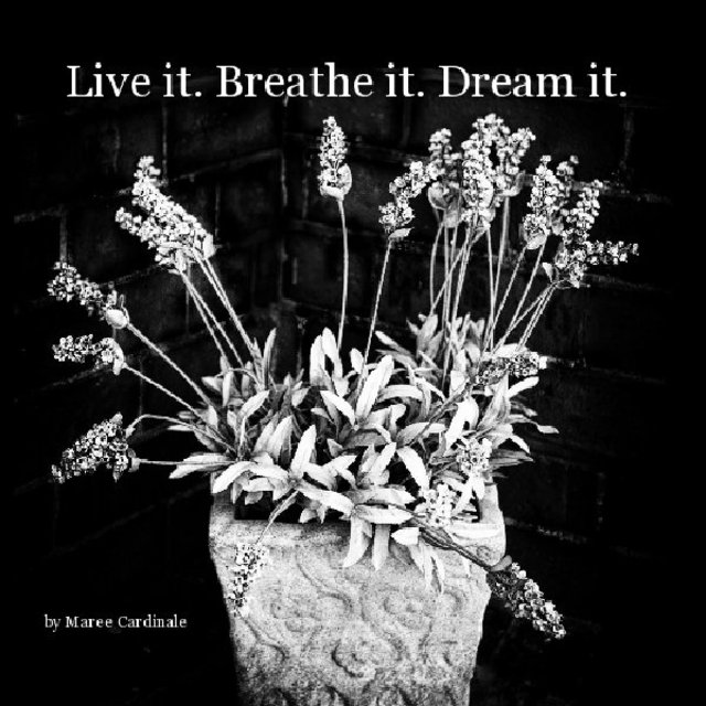Live it. Breathe it. Dream it.