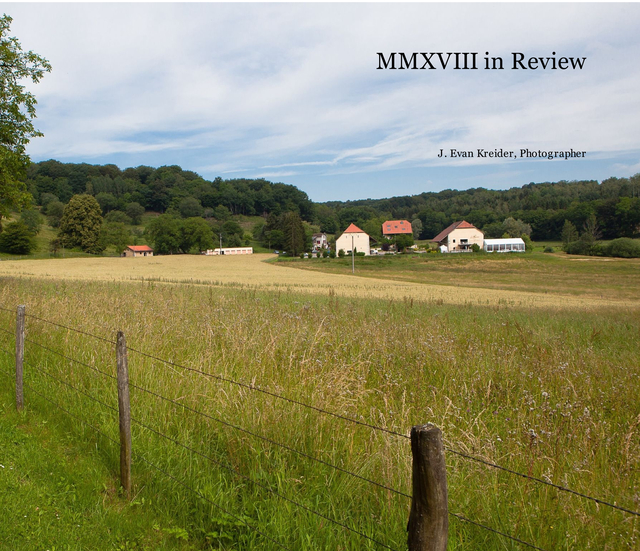 MMXVIII in Review