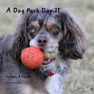 A Dog Park Day II