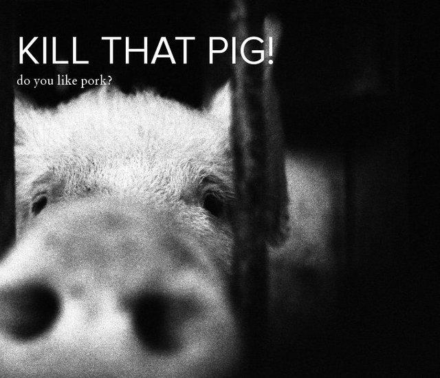 Kill that pig!
