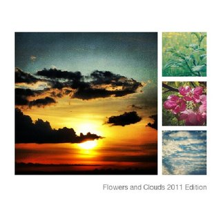 Flowers and Clouds 2011 Edition