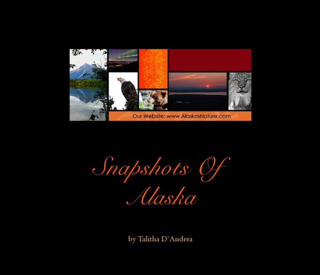 Snapshots Of Alaska-Large Landscape-78 pages