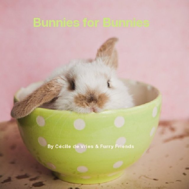 Bunnies for Bunnies By Cécile de Vries & Furry Friends