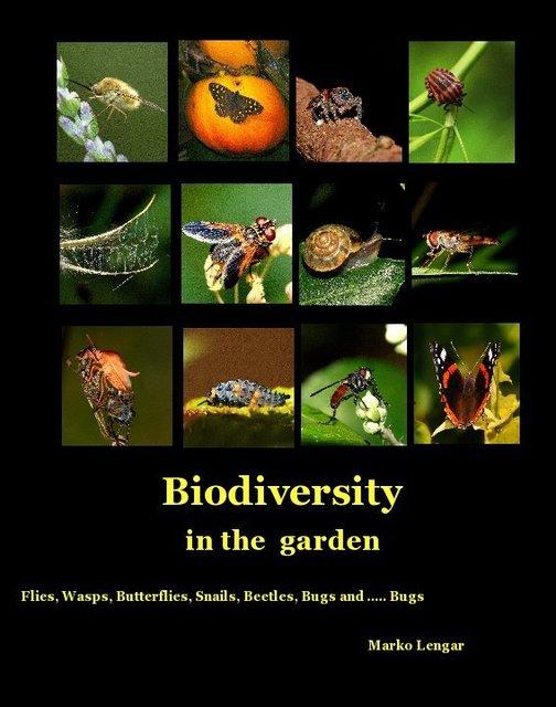 Biodiversity in the garden
