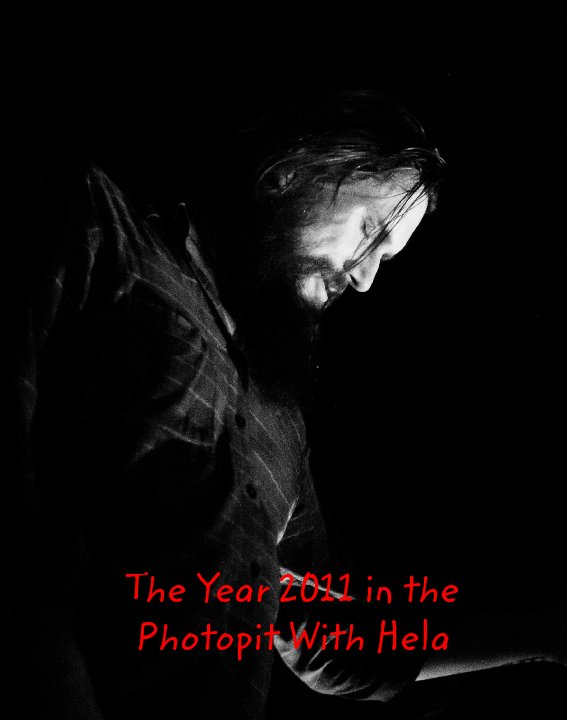 the year 2011 in the photopit with hela ebook by markus