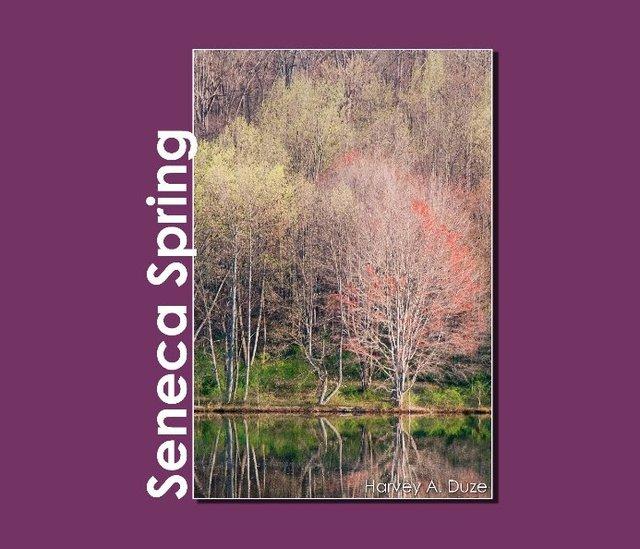 Seneca Spring