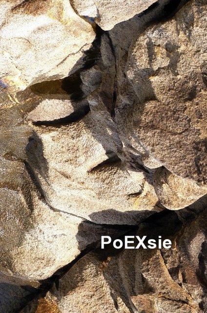 PoEXsie