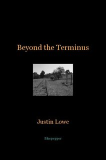 Beyond the Terminus