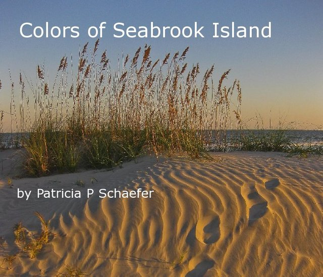 Colors of Seabrook Island by Patricia P Schaefer